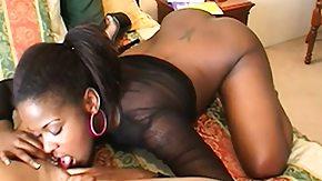 Ebony Lesbians, Big Pussy, Big Tits, Black Big Tits, Black Lesbian, Blowjob