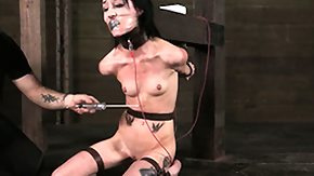 Bdsm, BDSM, Bound, Brunette, Fetish, High Definition