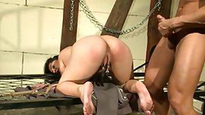 BDSM, Anal, Anal Creampie, Ass, Ass Licking, Ass Worship