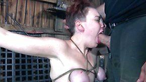 Hogtied, BDSM, Boobs, Bound, Brunette, Fucking