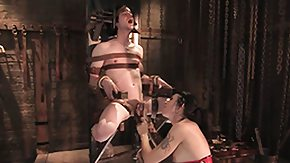 Mistress, Babe, BDSM, Bound, Brunette, Dominatrix