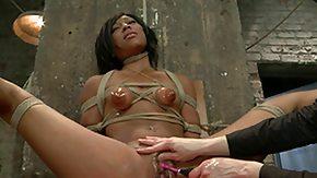 Leilani Leeane, Anal Toys, Ass, BDSM, Beauty, Bondage