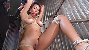 Bound Tit, 18 19 Teens, Barely Legal, BDSM, Big Tits, Bondage
